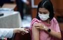 Thủ tướng chỉ đạo bổ sung vaccine cho TP.HCM, Bắc Giang và Bắc Ninh