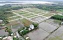 """Dự án ở Đồng Nai gây thất thu ngân sách: """"Bêu tên"""" King Bay - Free Land"""
