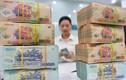 Ngân hàng trả thu nhập khủng: Vietcombank, SHB và Techcombank... top đầu