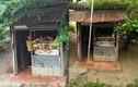 Tiệm bán vàng đơn sơ như cái lều, dân mạng bất ngờ vì nó ở Việt Nam