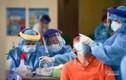 F0 nhập viện cao hơn số người xuất viện, TP.HCM chỉ đạo khẩn