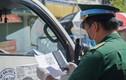 Đà Nẵng cấp giấy đi đường mã QR trực tuyến trong 5 phút