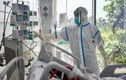 Sáng 12/10: Gần 784.800 bệnh nhân COVID-19 đã khỏi