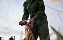 Theo chân thợ săn chuột đồng, làm đặc sản nức tiếng ở HN