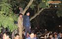 Đại biểu leo cây, trèo tường dự lễ khai ấn đền Trần