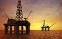 """TQ ráo riết """"hút"""" dầu khí ở vùng biển tranh chấp"""