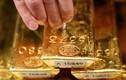 Giá vàng chiều ngày 24/2: Tăng phi mã, chạm mốc kỷ lục 49 triệu đồng/lượng