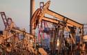 Giá dầu giảm 24%, giá xăng trong nước có về dưới 10.000 đồng/lít?