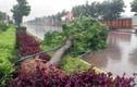 Siêu bão Haiyan tấn công miền Trung, đe dọa miền Bắc
