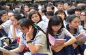 Đề thi vào lớp 10 môn Văn toàn tỉnh Thái Bình năm 2014
