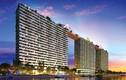 Soi dự án căn hộ xanh theo tiêu chuẩn Mỹ đầu tiên tại VN