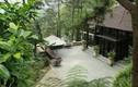 Cận cảnh resort xây không phép tại Vườn Quốc gia Ba Vì
