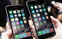 iPhone 6 và iPhone 6 Plus, nên mua cái nào?