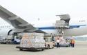 Tận mục lô hàng iPhone 6 từ Trung Quốc bay sang Mỹ