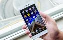 Có nên mua điện thoại Oppo R5 mỏng nhất thế giới?