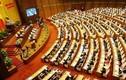 Sáng nay, Thủ tướng Nguyễn Xuân Phúc trả lời ý kiến ĐBQH