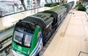 Ảnh: Tàu đường sắt trên cao đầu tiên ở Việt Nam lộ diện