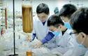 Học sinh Việt giành cú đúp HCV tại 2 cuộc thi Khoa học quốc tế