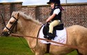 Video: Cô bé hai tuổi trổ tài cưỡi ngựa lão luyện