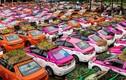Thái Lan: Tài xế thất nghiệp mùa dịch trồng cây trên nóc xe