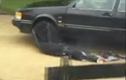 Xem cảnh sát Mỹ tung lưới... bắt xe như Việt Nam