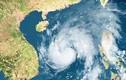 Việt Nam hứng chịu 9-10 cơn bão trong năm nay