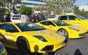 Hàng loạt siêu xe Lamborghini, Ferrari làm...taxi bình dân