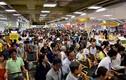 """""""Biển người"""" tấn công siêu thị Hàn Quốc ở Sài Gòn"""