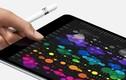 Apple sắp tung iPad 2018 có thiết kế màn hình như iPhone X