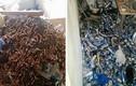 Phát hoảng với căn nhà siêu bẩn, ngập ngụa vỏ lon và tàn thuốc