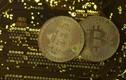 Giá Bitcoin hôm nay 28/1: Tin tặc tấn công, thị trường chao đảo