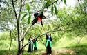 Phát sốt thiếu nữ xinh đẹp hái đào ở miền Tây xứ Nghệ