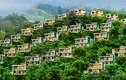 """Resort, biệt thự 5 sao xẻ núi """"treo trên đầu dân"""" ở Nha Trang"""