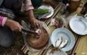 Ăn cá sống gây ung thư gan: Nên từ bỏ ăn thực phẩm sống