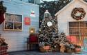 """Giáng Sinh kỳ thú ở """"làng Bắc Âu"""" giữa lòng Hà Nội"""
