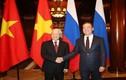 Tổng Bí thư Nguyễn Phú Trọng hội kiến với Thủ tướng LB Nga Dmitry Medvedev