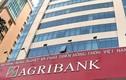 """Nghi vấn công ty Tân Nam Việt được """"dàn xếp"""" trúng loạt gói thầu tại chi nhánh Agribank?"""