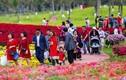 """Lễ hội hoa xuân Ecopark: Không hợp gia đình trẻ nhỏ, giá cả đắt """"chát"""""""
