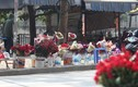 Hoa Valentine ế ẩm, ủ rũ dưới nắng nóng