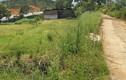 Dự án treo 10 năm, thung lũng hoa hồng tan tác ở ĐL