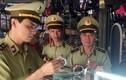 Quảng Ninh: Tịch thu cả nghìn đồng hồ giả, phạt 341 triệu đồng