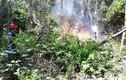 Cháy rừng ở Đà Nẵng, hơn 200 người chữa cháy nhiều giờ
