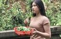 Ra vườn hái rau, cô gái Quảng Bình bất ngờ được CĐM chú ý nhờ điều này