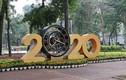 Đường phố Hà Nội rợp cờ hoa tưng bừng chào đón năm mới 2020