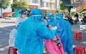Ngày 26/8, Đà Nẵng thêm 144 F0, chuỗi lây nhiễm chợ Hòa Cường 101 ca