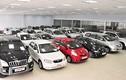 Giá xe nhập khẩu sẽ tăng khoảng 5% trong thời gian tới?