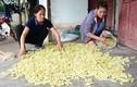 Cả làng nuôi tằm làm thức ăn, không trồng dâu lại có tiền rủng rỉnh