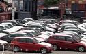 Hải quan bác trị giá ôtô nhập khẩu của GM Việt Nam