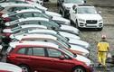 Hơn 500 ôtô nhập khẩu Thái Lan vừa về Việt Nam