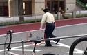 Video: Nhân viên an ninh kiên nhẫn dẫn đàn vịt sang đường gây sốt